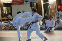 Karaté do Shotokaï : Démonstration